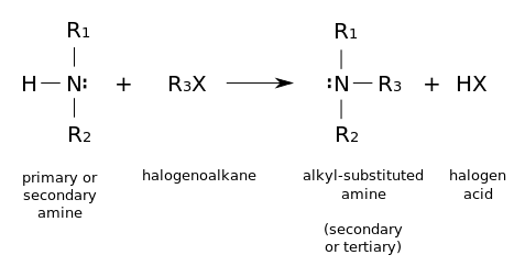 Example mechanism (http://upload.wikimedia.org/wikipedia/commons/thumb/c/cb/Alkylation_of_amine.svg/477px-Alkylation_of_amine.svg.png)