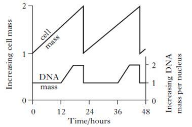 (http://www.hyndland-sec.glasgow.sch.uk/Websites/SchSecHyndland/UserFiles/image/Biology%20Dept/Hotpots/AH2010MCQ4.jpg)