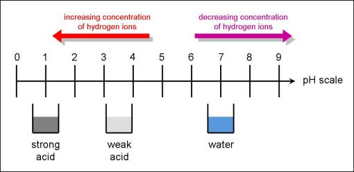 Strength of Acids - pH Scale (http://gcserevision101.files.wordpress.com/2009/02/ph-scale-acids.jpg?w=510&h=248)