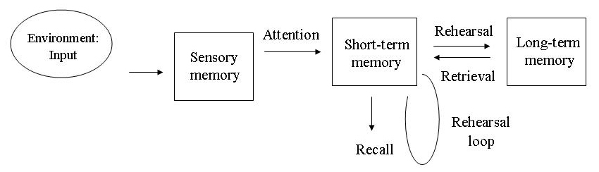 multi store model of memory diagram (http://www.simplypsychology.org/Multi-Store-Model%20.jpg)