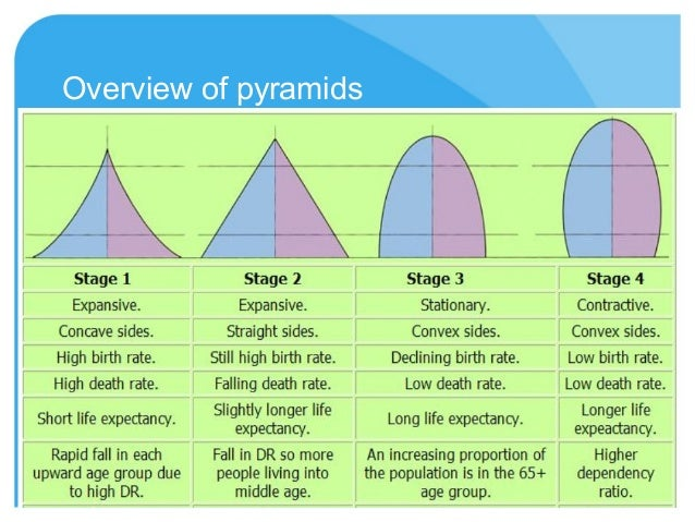 (http://image.slidesharecdn.com/pyramidsanddemographictransition-130311150245-phpapp01/95/pyramids-and-demographic-transition-5-638.jpg?cb=1363014403)