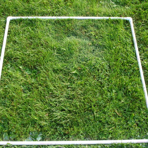 (http://images4.wikia.nocookie.net/__cb62143/tractors/images/thumb/9/9e/SquareMeterQuadrat.jpg/500px-257,1794,0,1536-SquareMeterQuadrat.jpg)