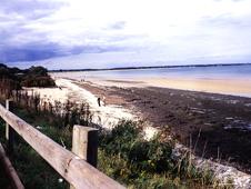 Studland Beach (http://www.bbc.co.uk/staticarchive/12fbd8e4ba4d24c96e39fe0f19135a7dca69915d.jpg)