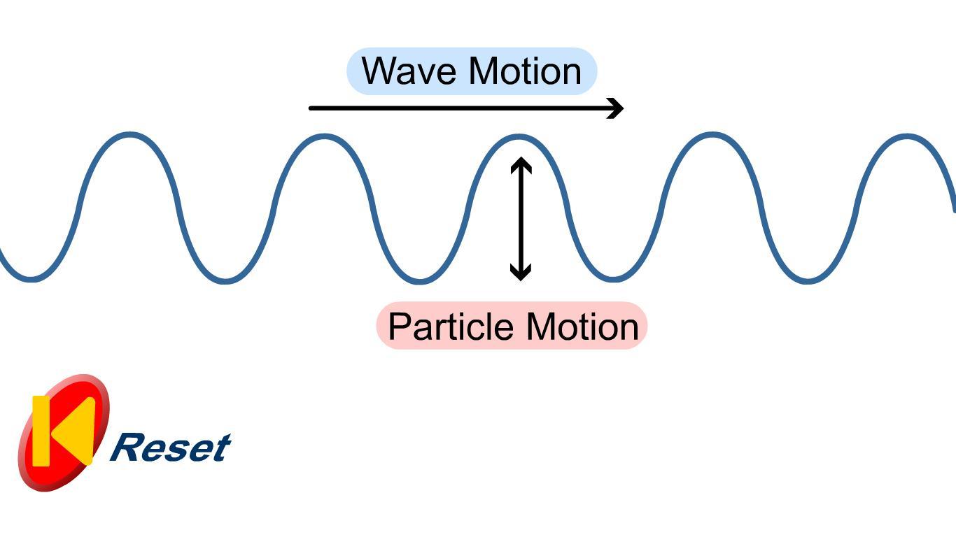 (http://3.bp.blogspot.com/-A8k5RlekXcM/TZMZTQ0vKvI/AAAAAAAAACg/xTDe-R_JvZg/s1600/Transverse+Wave.jpg)