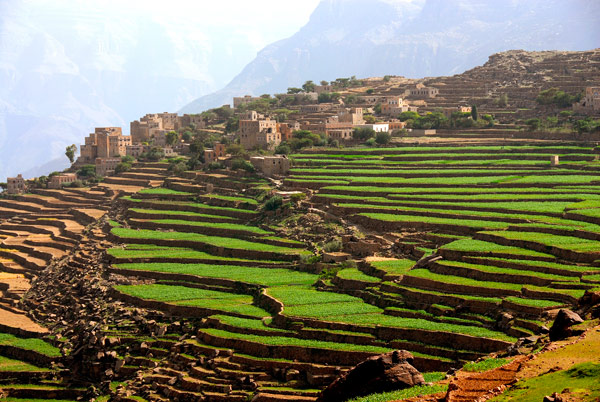 (http://www.filaha.org/images/introduction_popups_pics/terraced-fields-dira-yeme_L.jpg)