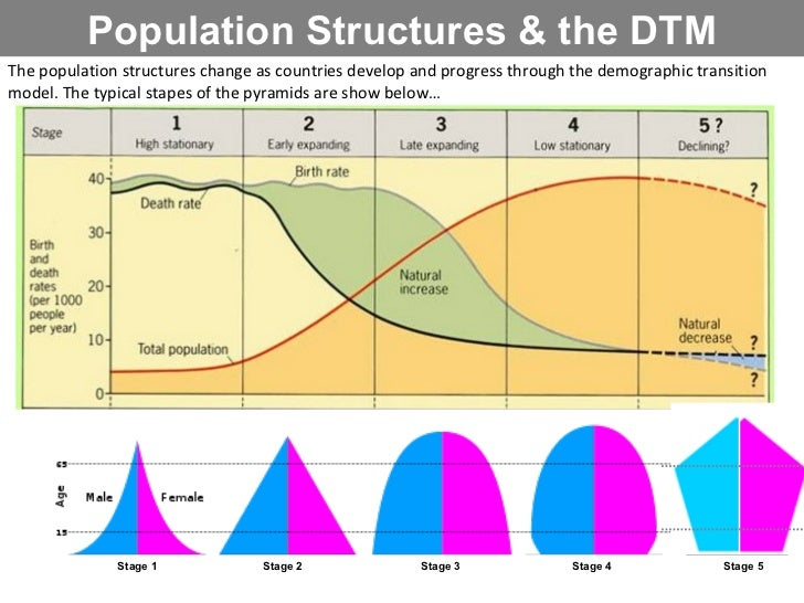 (http://image.slidesharecdn.com/3populationstructures-111116154054-phpapp02/95/population-structures-3-728.jpg?cb=1321479749)