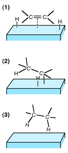(http://upload.wikimedia.org/wikipedia/commons/thumb/8/8d/Hydrogenation_on_catalyst.png/220px-Hydrogenation_on_catalyst.png)