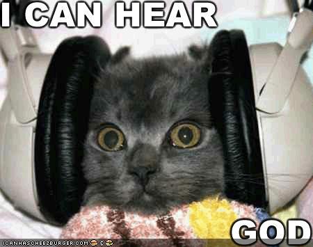 (http://4.bp.blogspot.com/_kK9fqCc3hy4/S82N1lbaEAI/AAAAAAAAAbc/o7EmC2Ez8PQ/s1600/funny-pictures-cat-headphones-god.jpg)