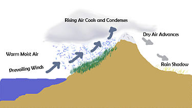 (http://upload.wikimedia.org/wikipedia/commons/thumb/9/9a/Rainshadow_copy.jpg/375px-Rainshadow_copy.jpg)