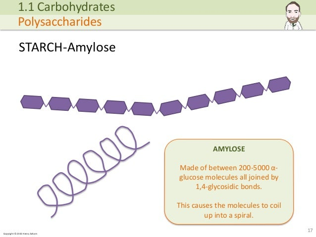 Copyright © 2015 Henry Exham STARCH-Amylose 17 1.1 Carbohydrates Polysaccharides AMYLOSE Made of between 200-5000 α- gluco... (http://image.slidesharecdn.com/alevelbiology-1biologicalmoleculessample-150724121945-lva1-app6892/95/a-level-biology-biological-molecules-17-638.jpg?cb=1437740601)