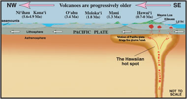 (http://geology.com/usgs/hawaiian-hot-spot/hawaiian-hot-spot-sm.jpg)