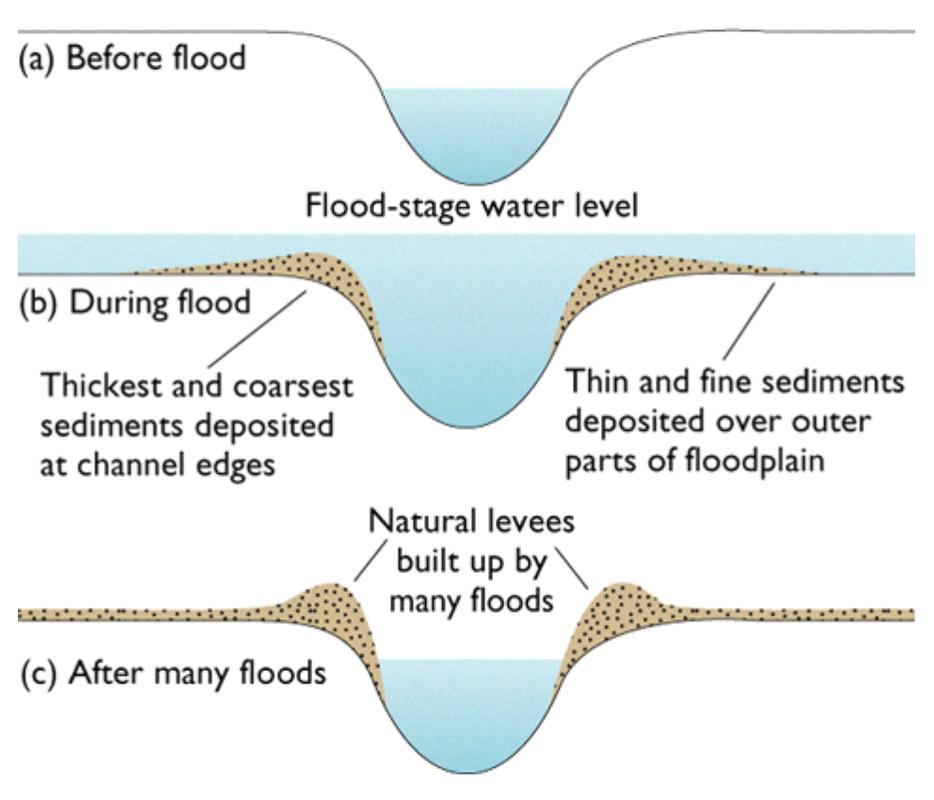 Image result for levee diagram (http://www.thegeographeronline.net/uploads/2/6/6/2/26629356/5561868_orig.png)