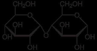 (http://upload.wikimedia.org/wikipedia/commons/thumb/9/93/Maltose_Haworth.svg/322px-Maltose_Haworth.svg.png)
