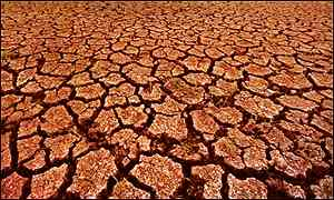 (http://ralphyrevision.files.wordpress.com/2011/02/527040_drought300.jpg)