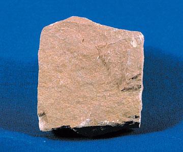 (http://upload.wikimedia.org/wikipedia/commons/4/42/SiltstoneUSGOV.jpg)