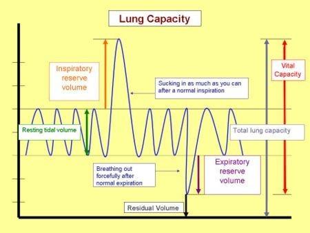breath volume chart (http://www.devonsmassage.com/images/LungCapacity.jpg)
