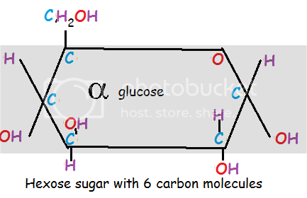 (http://i869.photobucket.com/albums/ab259/britishreject27/glucose.png)