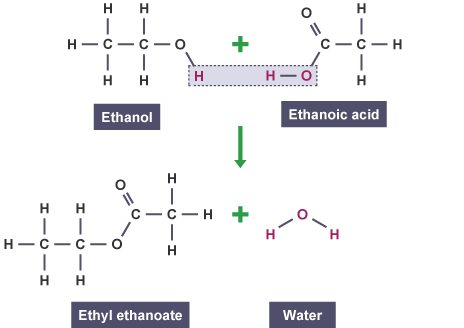 Ethanol and ethanoic acid combine to form ethyl ethanoate and water (http://www.bbc.co.uk/schools/gcsebitesize/science/images/triple_science/024_bitesize_gcse_tschemistry_alcoholscarboxylicacidsandesters_ethylethanoate_464.gif)