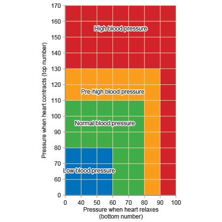 Blood pressure range (http://www.bbc.co.uk/schools/gcsebitesize/science/images/21c_bio_blood-pressure.jpg)