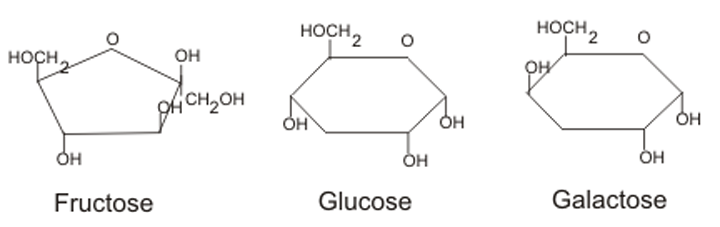 (http://www.sarahkayhoffman.com/wp-content/uploads/2013/02/Monosaccharide-Structure.png)