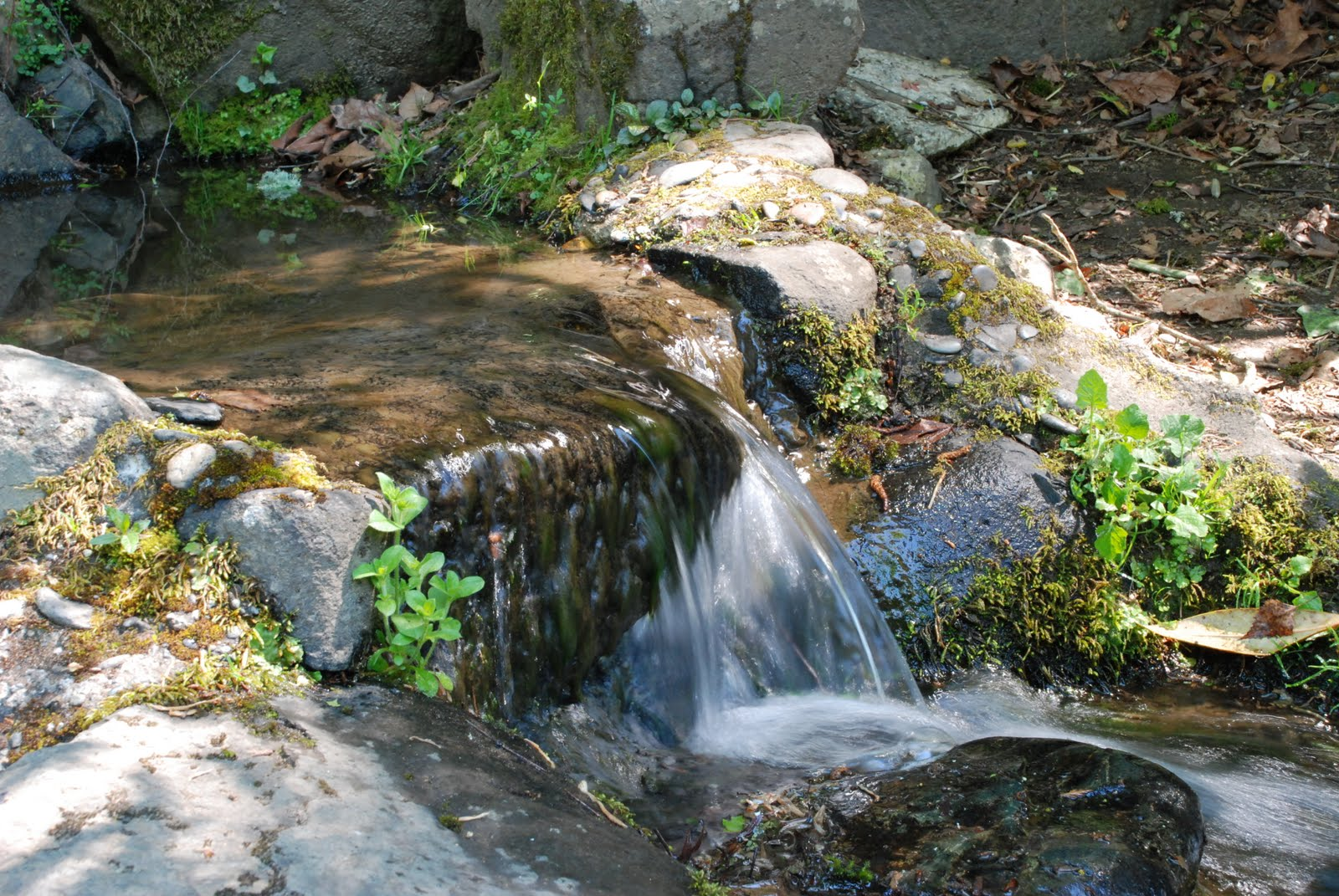 (http://4.bp.blogspot.com/_CRE_AWBPa2U/S-iHKcNs4II/AAAAAAAAABU/YqJ9PYn9BZ8/s1600/Photo+Class+Falls+Tumwater+5-2010+030.JPG)