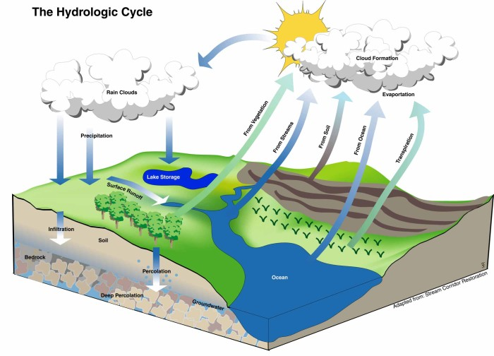 (http://blackpoolsixthasgeography.pbworks.com/f/1265793530/hydrologic-cycle_s.jpg)