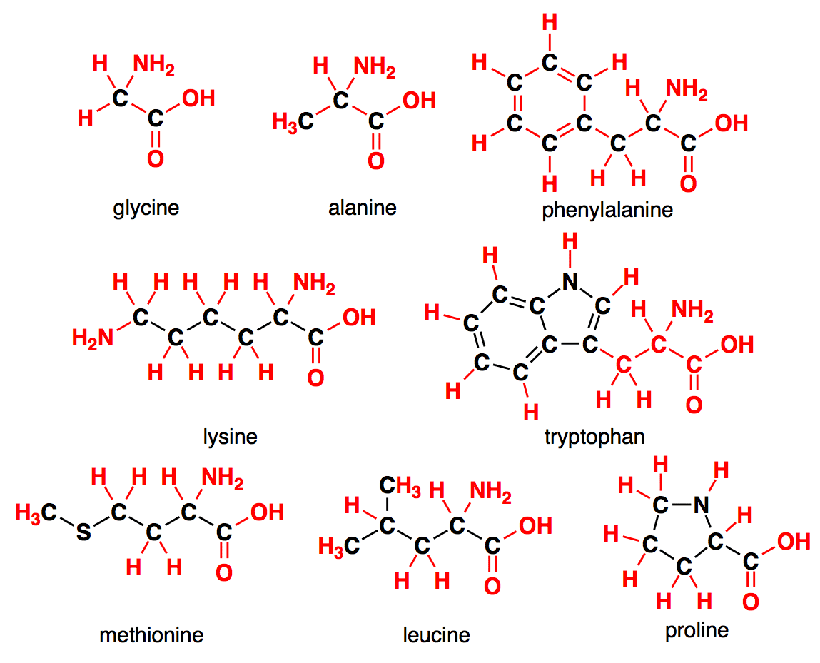 (http://www.chemtube3d.com/images/clayden/aminoacids.png)
