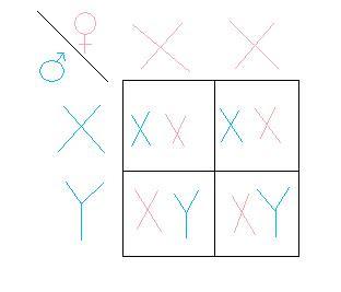 (http://2.bp.blogspot.com/_eKAE6H4vieA/TJJVb6nm90I/AAAAAAAAAAM/geM1WV-0HA0/s320/punnent+square.jpg)