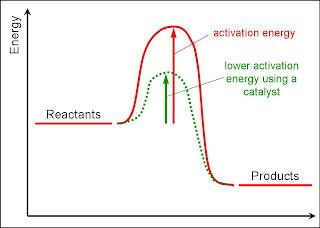 (http://4.bp.blogspot.com/_uzrWbt2ZlyE/TInsf-GBK8I/AAAAAAAAAGQ/nuRopXPltaI/s320/energy-level-diagram-activation-energy.jpg)