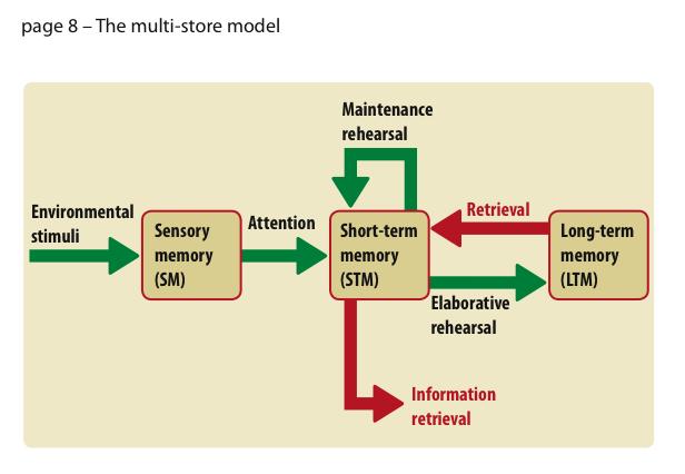 (http://1.bp.blogspot.com/-r5RVnlwQocs/ToBlbAifUPI/AAAAAAAAAAw/5OWTuWGzVWg/s1600/Multi-store+model.jpg)