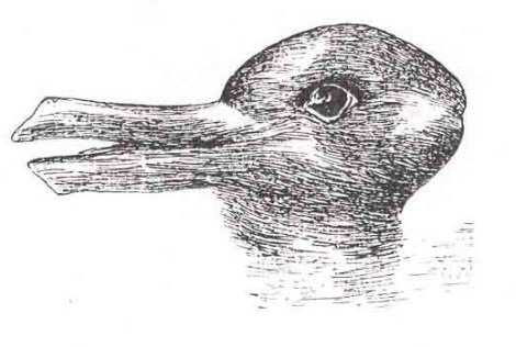 (http://pablogarcialopez1.files.wordpress.com/2012/08/duck-rabbit_illusion.jpg?w=470&h=316)
