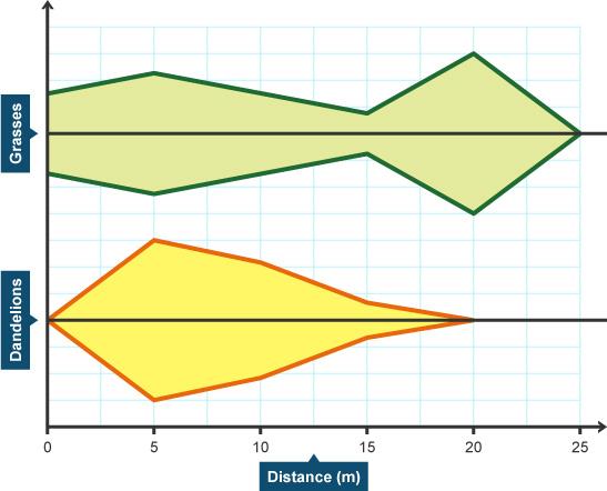 Kite chart (http://www.bbc.co.uk/staticarchive/ec2a189d7ecddde97c9de7878b547d490cc050a8.jpg)