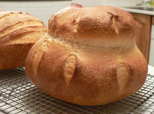 (http://figjamandlimecordial.files.wordpress.com/2010/02/perfect-cottage-loaf2.jpg)