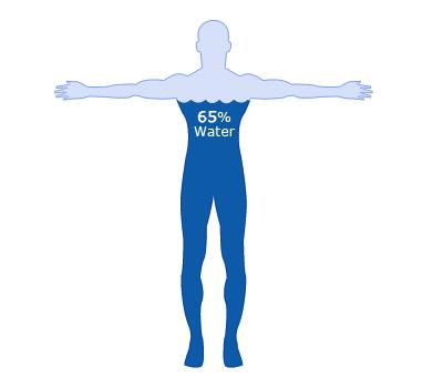 (http://www.passmyexams.co.uk/GCSE/biology/images/human_water.jpg)