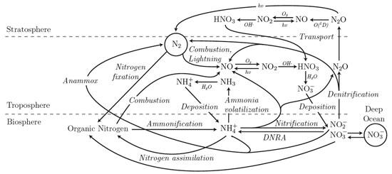 (http://anthony.darrouzet-nardi.net/works/nitrogenbiochemistry.jpg)