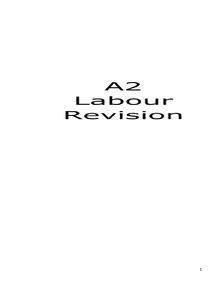 Preview of A2 History Civil Rights Labour and Trade Unions Revision Guide (OCR)