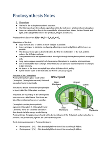 Preview of A2 - AQA Biology (Unit 4) - Photosynthesis