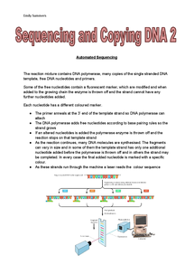 Preview of A2 OCR Biology: 2.2.11 Sequencing and Copying DNA 2