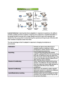 Preview of A2 OCR Biology 2.4.12 Learned Behaviour