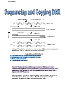 Preview of A2 OCR Biology: Sequencing and Copying DNA
