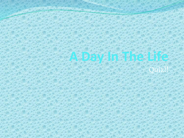 Preview of A Day in the Life Quiz