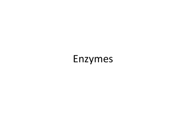 Preview of A little power point about enzymes :)