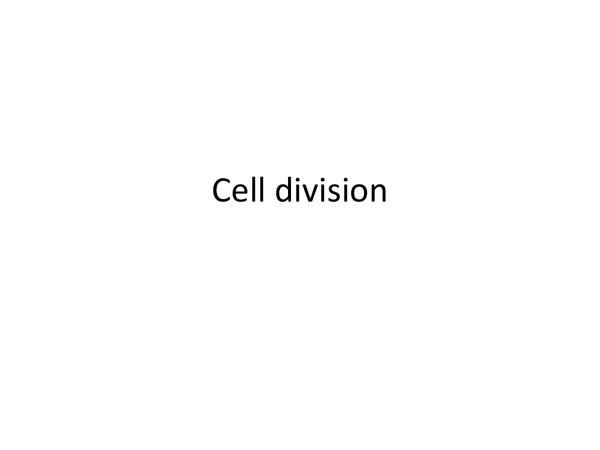 Preview of A little powerpoint about cell division :)