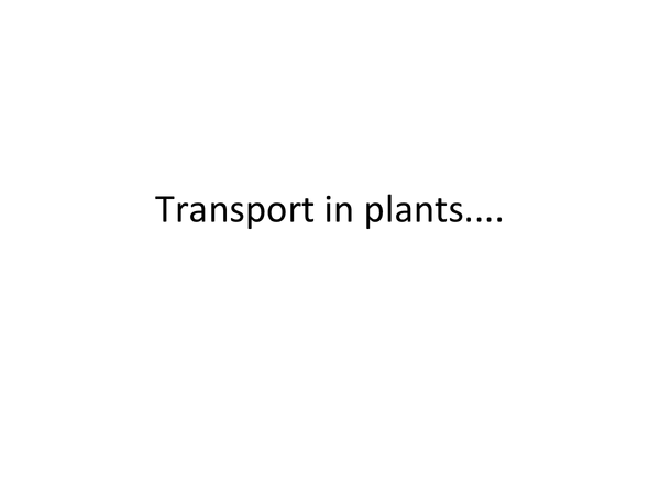 Preview of A little powerpoint about transport in plants :)