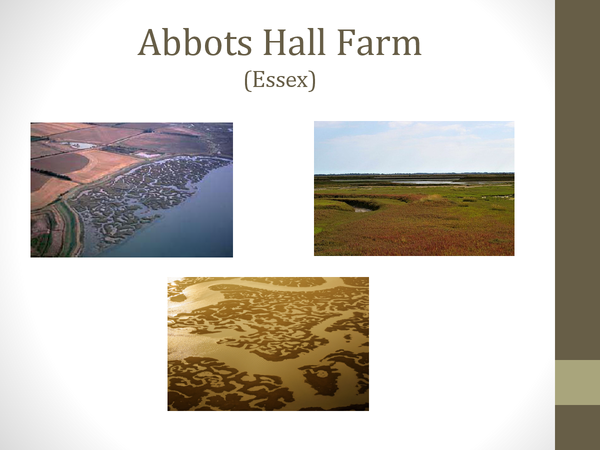 Preview of Abbots Hall Farm Coasts Case Study