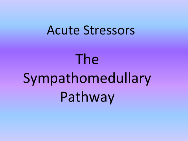 Preview of Acute stressors: The Sympathomedullary pathway