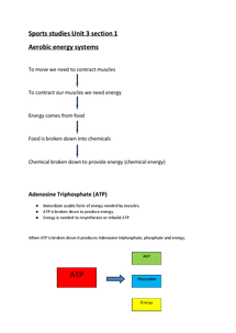 Preview of Aerobic Energy System