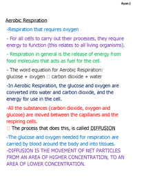 Preview of Aerobic Respiration