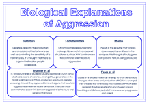 Preview of Aggression: Biological Explanation AO1