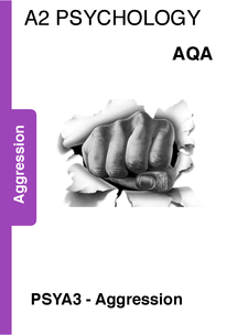 Preview of Agression revision booklet